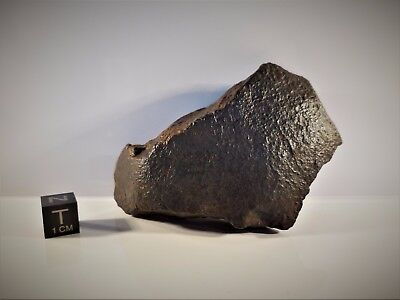 Meteorite from the Sahara Desert 162.6 grams