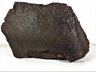 Meteorite from the Sahara Desert - 740 grams