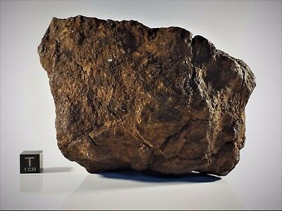 Meteorite from the Sahara Desert - 1.1 kg