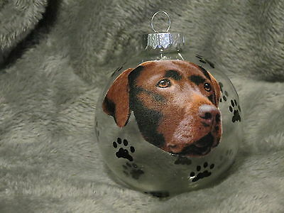 "Hand Made Chocolate Labrador Retriever 3"" Glass Christmas Ornament / Ball"