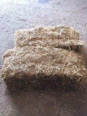 SALE 2016 hay  - BATCHES OF 10 BALES £15.00 - we need the space