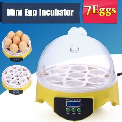 7 Digital Clear Egg Incubator Hatcher Automatic Turning Temperature Control OUV