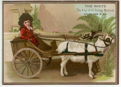 c1890 White Sewing Machines trade card - Syracuse New York - girl in goat cart