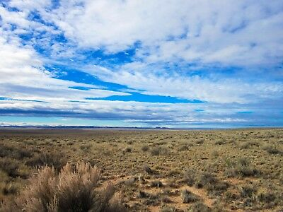40 Acres near Petrified Forest National Park - No reserve DOWN PAYMENT bidding!