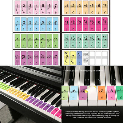 eacb0a08409 Fr 88 Key Piano Keyboard Stickers Key Note Label Decal Teach Learn to Play  Music