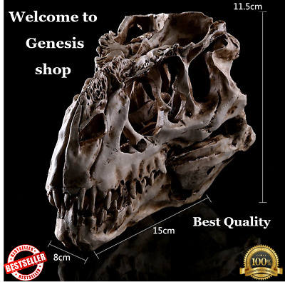 Tyrannosaurus T-Rex Skull Resin Fossil Model, Dinosaur Collectibles Replica New