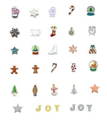 Christmas Winter Floating Charms w / Bonus FREE Authentic Origami Owl Crystal