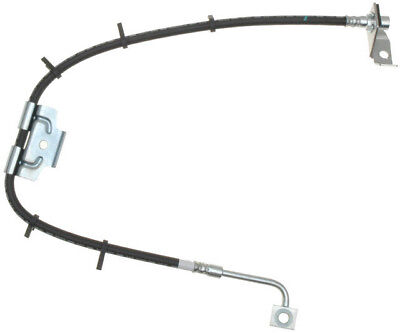 Brake Hydraulic Hose-PG Plus Front Right Raybestos BH382377