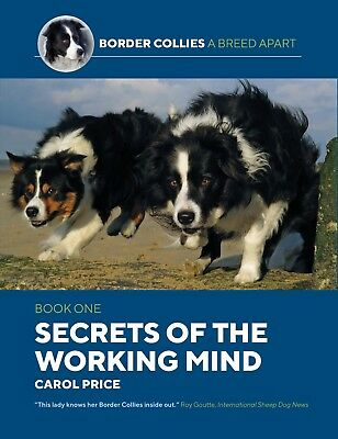 Border Collies- A Breed Apart: Secrets of the Working Mind