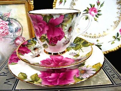 Duchess Tea Cup And Saucer Trio Chintz Roses & Daisy  Flowers Teacup Set