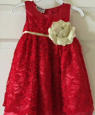 24014a93 NEW BLUEBERI BOULEVARD Baby Girl Floral-Lace Dress. Size 12 Months ...