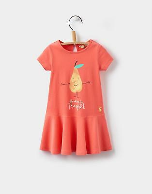 Joules Toddler Jessica Drop Waist Dress in Pink Pear Size 3min6m