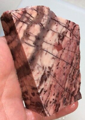 Kona Dolomite Rough For Lapidary, Display - Michigan - 11.6 Oz