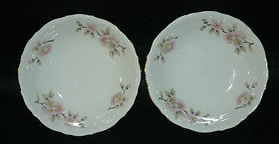 Mitterteich Springtime China - Pair Of Fruit Or Dessert Bowls
