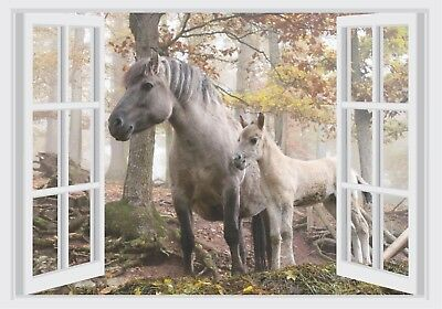 Horse & Colt Woods Window View Color Wall Sticker Wall Mural Print