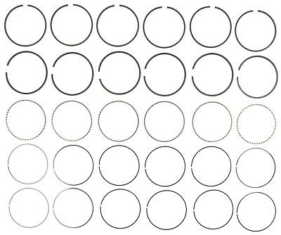 Engine Piston Ring Set Mahle 51870cp 020 Fits 96 01 Jeep Cherokee