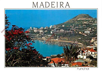 Picture Postcard- Madeira, Funchal, Western View