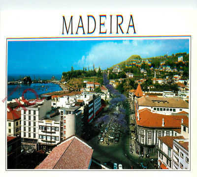 Picture Postcard- Madeira, Funchal
