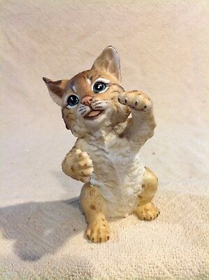 "WILDERNESS BABIES ""ROCKY"" the Bobcat 1985 ROGER BROWN never displayed new 112"