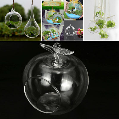 Candle Holder Candle Glass Clear Apple Ornament Wedding