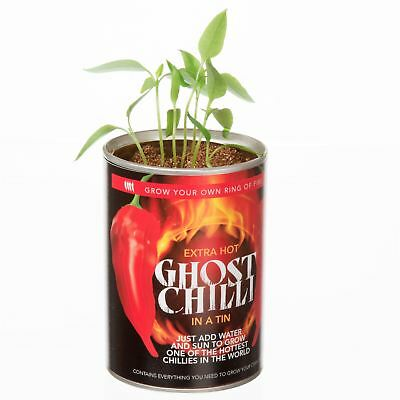 GYO Grow Your Own Hot Ghost Chilli Chillies Peppers Secret Fun Stocking Filler