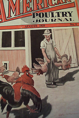 """VTG 1929 Magazine~""""AMERICAN POULTRY JOURNAL""""~Quite Amazing~Chickens"""