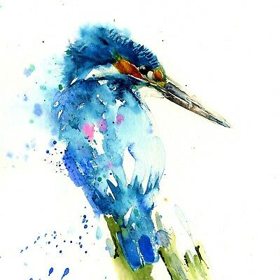 kingfisher Bird Abstract Animal home decor Canvas Painting wall art collection