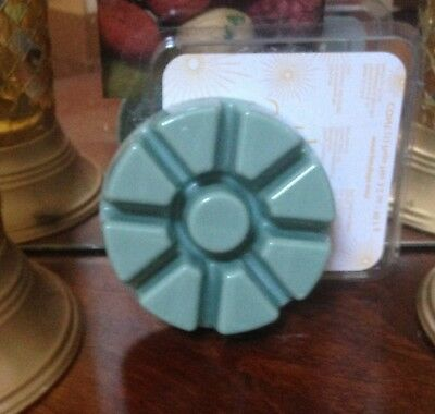 PARTYLITE WHITE CEDAR LEAF wax scented melts tray SCENTS PLUS line 40% discount