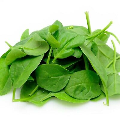 BABY SPINACH Seeds Baby Leaves Salad Winter Vegetable Garden EASY GROW 60+ Seeds