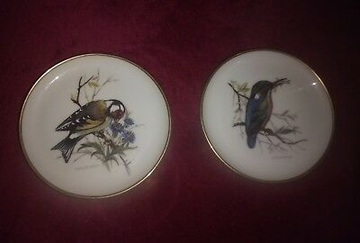 Pair Vintage AK Kaiser W Germany Porcelain Dishes Kingfisher & Greenfisher