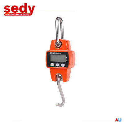 Mini Crane Scale Portable LCD Digital Electronic Hook Hanging Weight 300kg 0.1kg