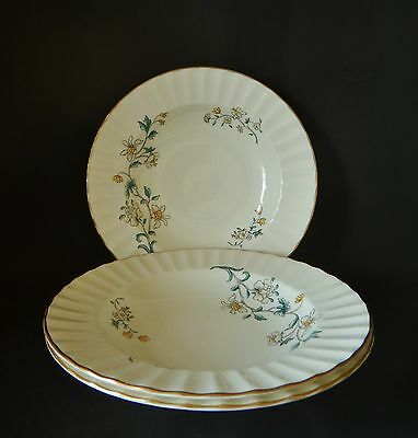 Three Royal Worcester Spring 8 Inch Soup Bowls  Very Good Condition