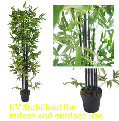 UV Stabilized Artificial Japanese Bamboo On a Black Trunk 1.8m