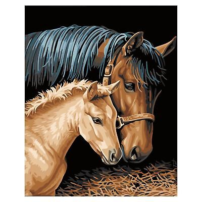 Diy Oil Painting by Numbers -Horses- PBN Kit for Adults Girls Kids White Ch S8M8