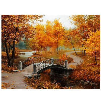 16*20 inch DIY Paint By Number Kit Digital Oil Painting Canvas Beautiful Sc M8F8
