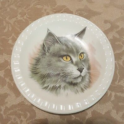 "Weatherby Hanley England Falcon Ware 5"" CAT KITTEN Plate Excellent"