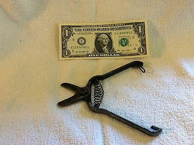 Antique primitive iron gardening hand clippers - unmarked & unused-