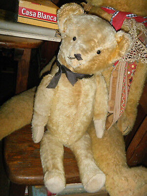 American Antique Bear, Shoebutton Eyes,  Poss.  Ideal