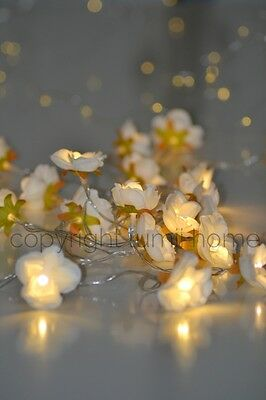 Snow White Rose Flower Fairy string warm white LED Lights christmas decoration