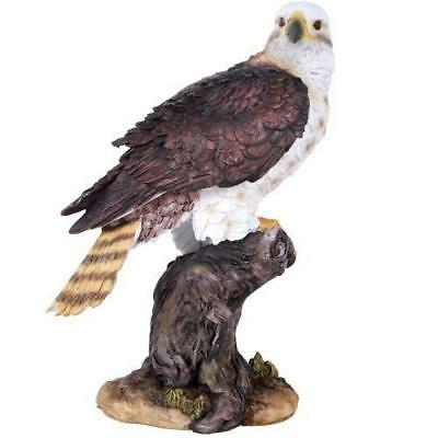 Wildlife Red Tailed Hawk Eagle Birds of Prey Figurine Statue 10 Inch