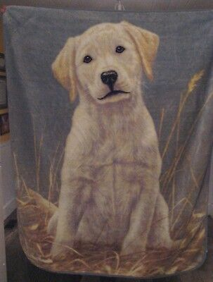 "Vtg Northwest Co Blanket is Labulous! Yellow Lab, 64"" x 50"""