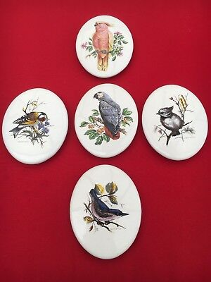 Eastgate - 3 x Painted Bird Oval Wall Plaques & 2 x Parrot Painted (not marked)