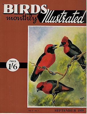 Birds Illustrated Monthly Magazine 1959 September Vultures As Pets 2659F