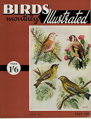 Birds Illustrated Monthly Magazine 1957 May Budgerigar Feather Plucking 2633F