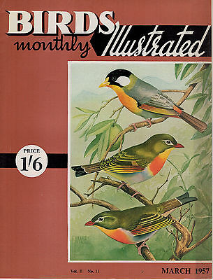 Birds Illustrated Monthly Magazine 1957 March Canary Breeding For Beginner 2631F