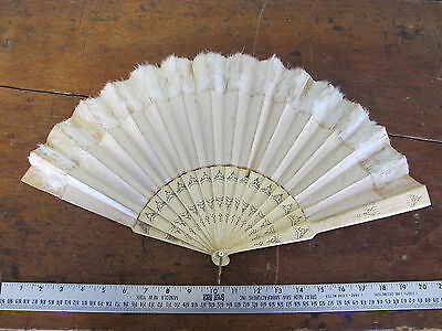 Antique 1800's Carved Cow Bovine Bone Silk Ostrich Ladies Hand Fan Brides 20""