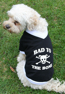 Bad to the Bone DOG CLOTHES SHIRT Jacket XSMALL TO XXX LARGE DOGS Black - New