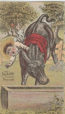 Trade Card~Straw Hats~1880~Boy On Donkey