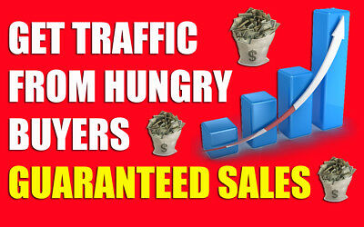 Unlimited Website Traffic for 60 days