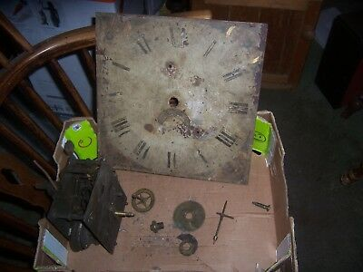 "long case clock movement 30 hr and 12""dial shed find"